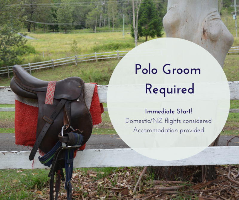Polo Groom Required