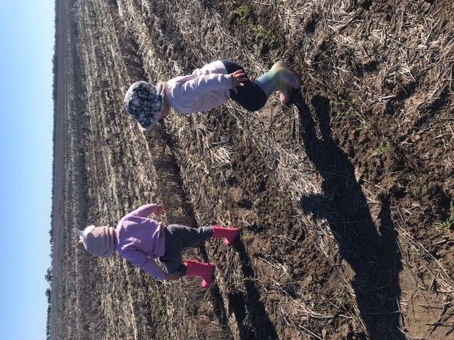Au Pair/ Farm Housekeeper