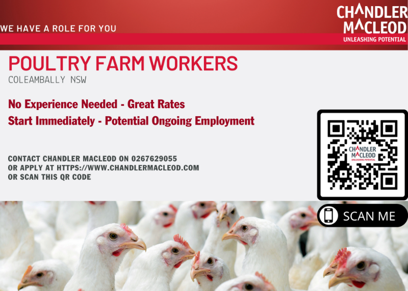 Poultry Farm Workers