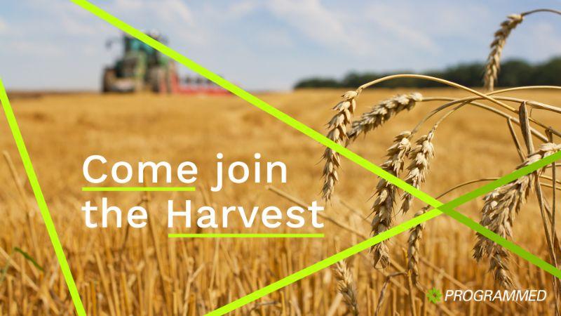 Grainflow Harvest Season - Now Hiring In New South Wales