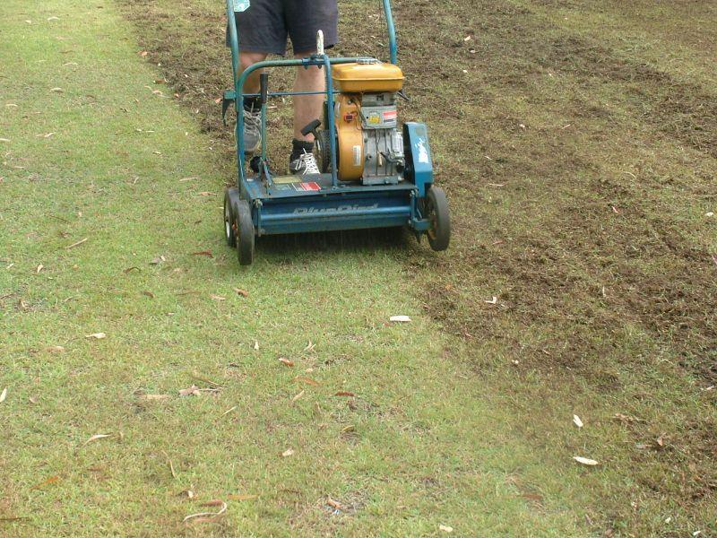 Labourer- Gardening
