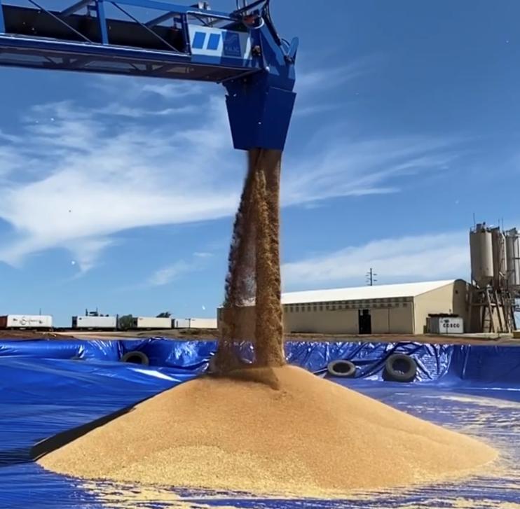 Grain Harvest Worker (casual)