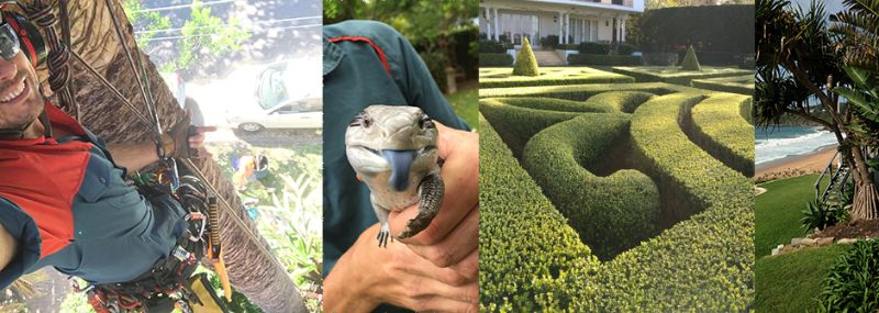 Horticulturist / Landscape Gardener / Assistant Gardener