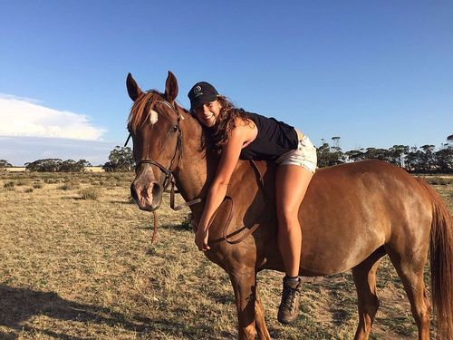Caring For Horses, Dogs & Maintenance On Small Rural Property
