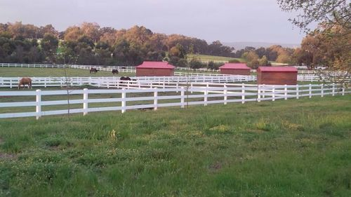 Stunning Equestrian Property - Farm Work Second Year Visa