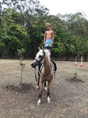 Au Pair/horse Farm Worker